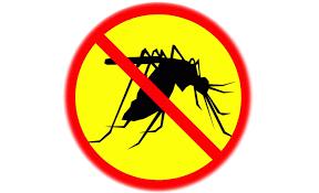 Отличная защита от комаров и москитов