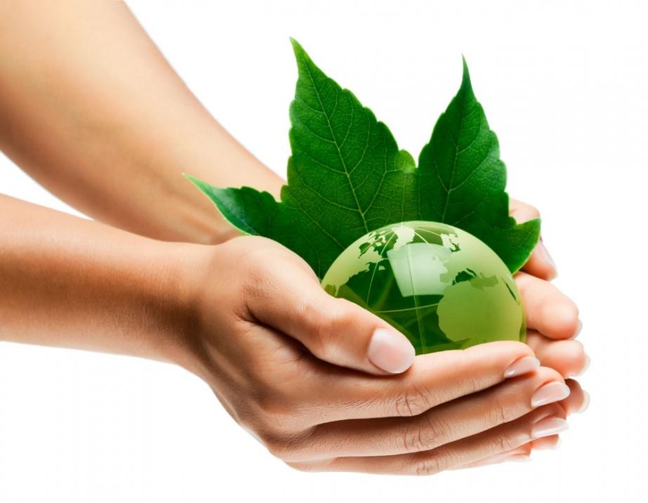 «Псевдо Экологи» – кто пытается нажиться на российской экологии